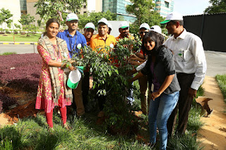 Embassy Office Parks techies planting a tree