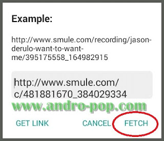 Fetch Link Video