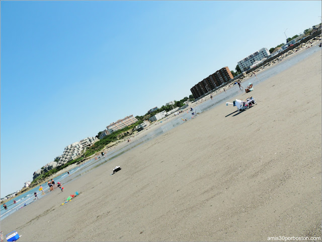 Marea Baja en la Playa Nantasket Beach, Hull
