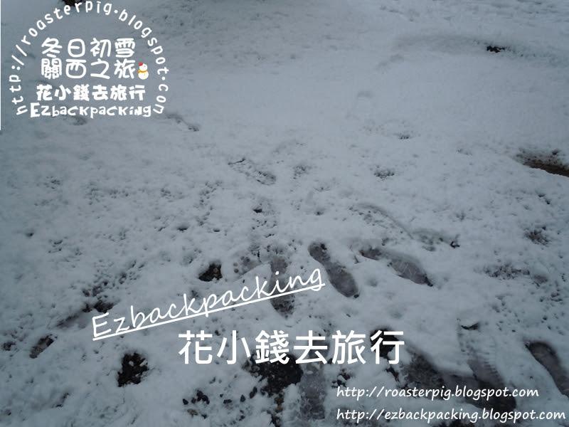 北海道天氣統計+降雪資料(札幌,富良野,旭川,小樽)