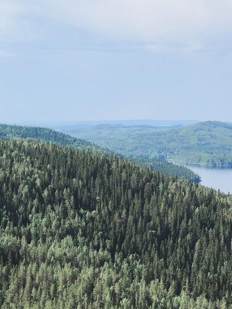 Mäkrävaara view, Finland