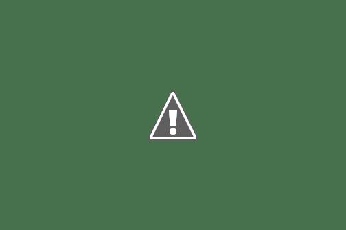 Little boy with pet cat