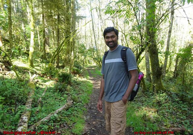 Oregon Cascade Head Natural Hike