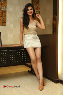 Actress Kamana Ranawat  Pictures in Short Dress at Selfie Raja Movie Success Meet  0309