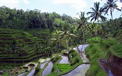 Inilah 5 Tempat Wisata Bali Paling Populer