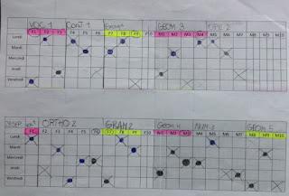 Organisation PDT cm2