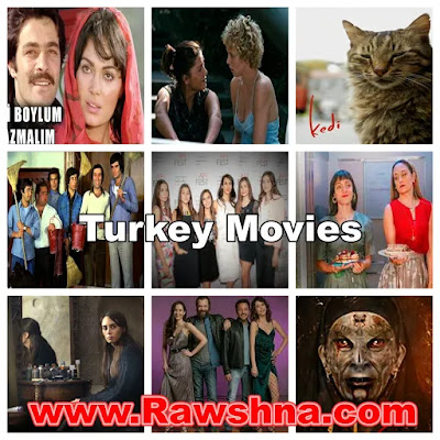 افضل افلام تركيا على الإطلاق