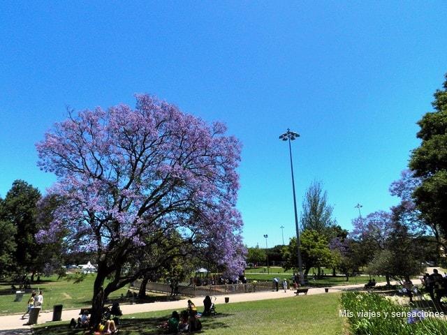 Jardín de Belém, Lisboa
