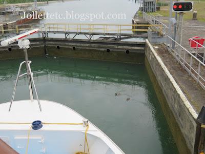 Ducks in a lock on the Rhine 2019 https://jollettetc.blogspot.com