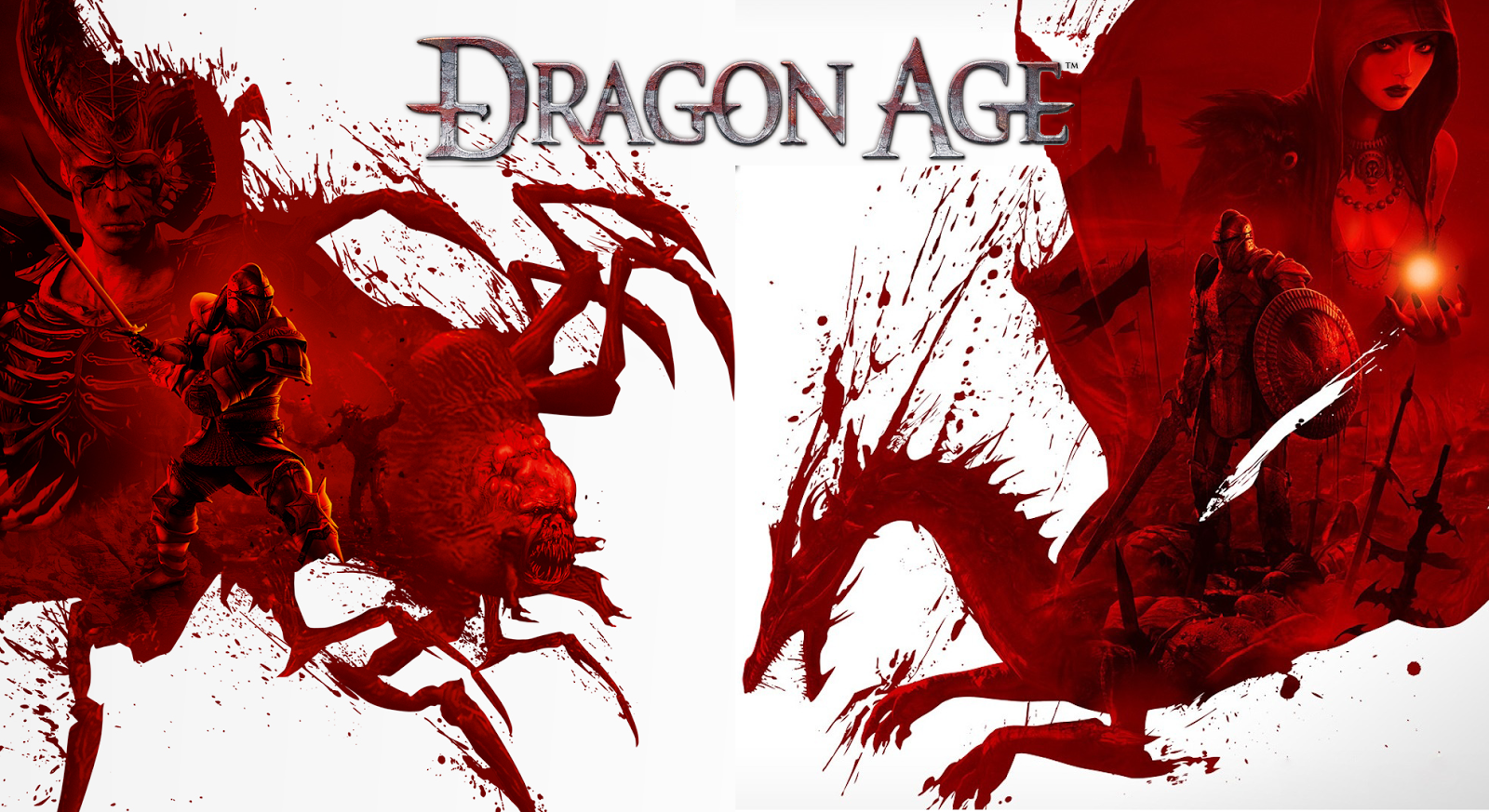 Dragon Age Origins Wallpapers: Rants From A Fangirl: First Impression(s): 'Dragon Age
