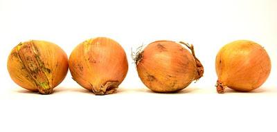 Сажаем лук-репку из севка / Блог Дача-это просто!
