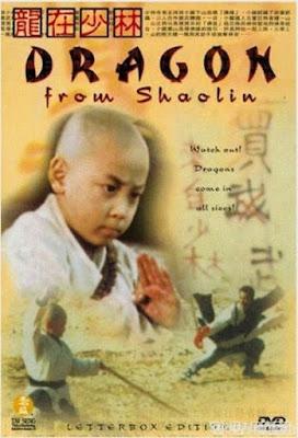Tiểu Tử Thiếu Lâm 3 - Dragon from Shaolin (1996)