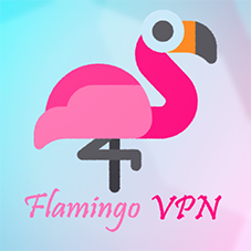 Flamingo VPN – Unblock Social & Secure Internet