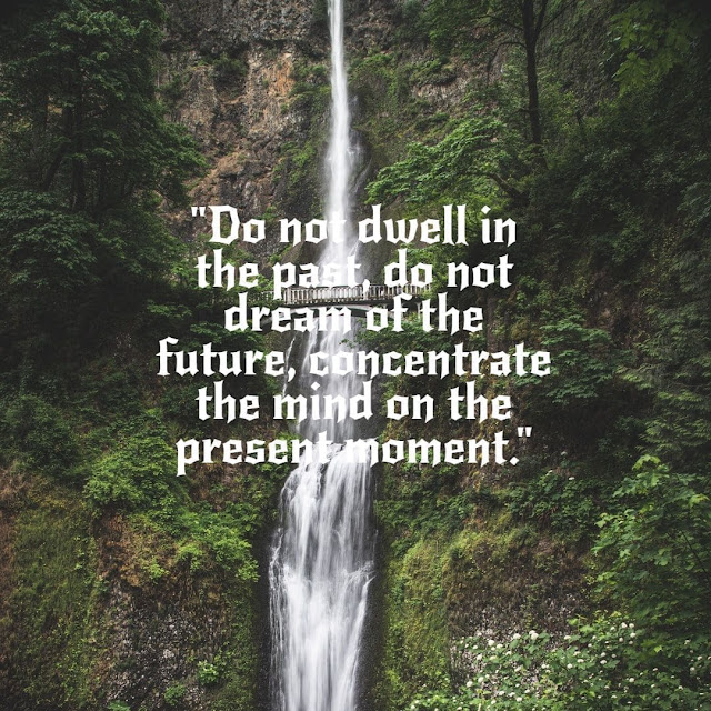 Buddha's quotes on mind