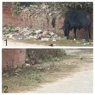 मोहल्ला गुलिस्तान-ए-शेर में स्वच्छ भारत अभियान की जम कर उड़ाई जा रही धज्जिया