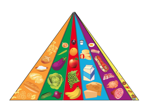 food pyramid lesson