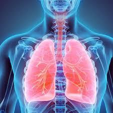 تنظيف الرئتين من اثار التدخين بطريقة علمية