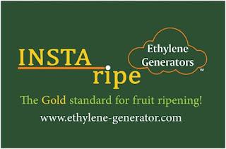 INSTA ripe Ethylene Generator Amisha foods