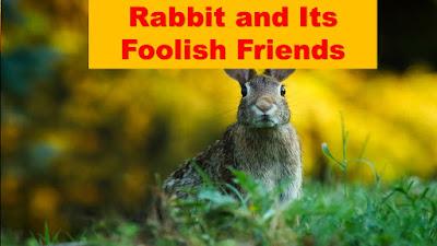 Rabbit and Its Foolish Friends