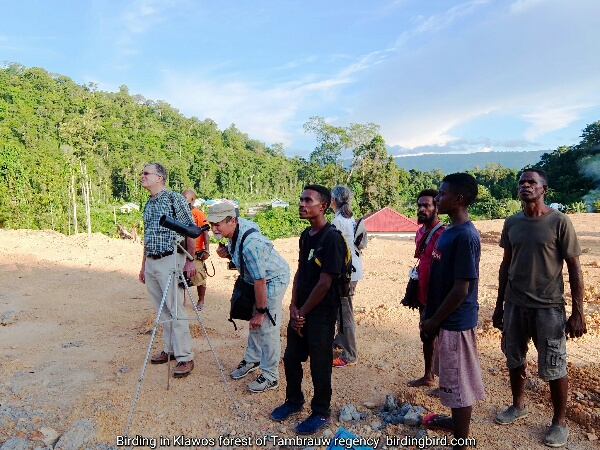 American tourists guided by Charles Roring were birdwatching in Tambrauw regency of West Papua