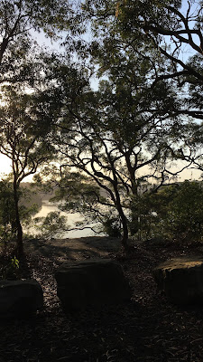 Morning Walks at Oatley Park