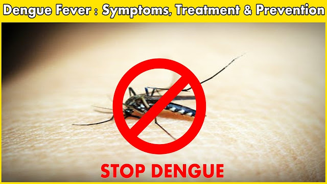 Symptoms Of Dengue Fever In Kids