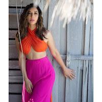 Sophie Chaudhary Latest Photos HeyAndhra