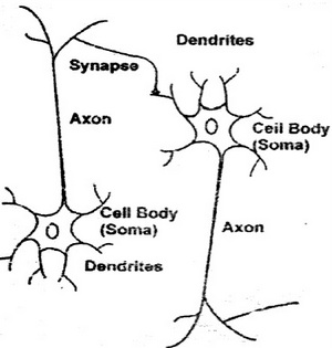 Applications Of Neural Network In