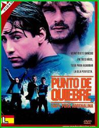 Punto de Quiebre 1991 | DVDRip Latino HD Mega 1 Link