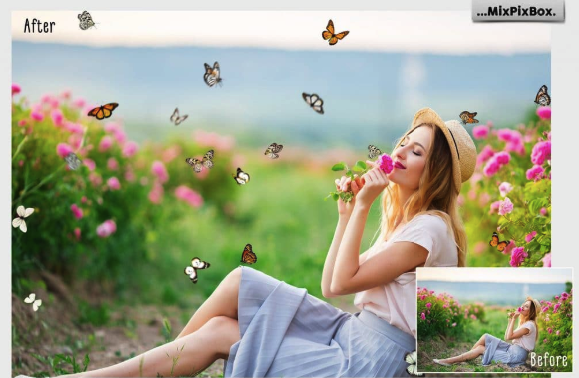 Butterfly Clipart 2019