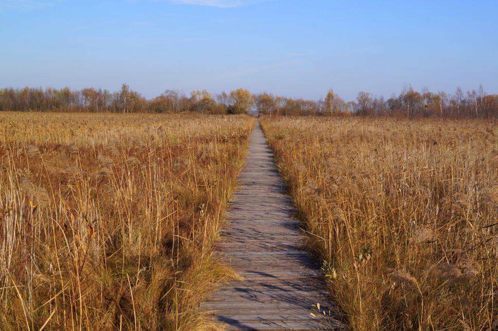 Długa Luka - Biebrzański Park Narodowy