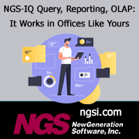 NGS-IQ Query, Reporting, OLAP: It works in Offices Like Yours