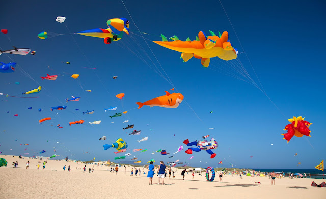 On the beach with various kites flying.