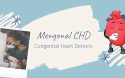 Mengenal Congenital Heart Defect (CHD) Penyakit Jantung Bawaan