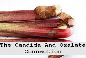 https://foreverhealthy.blogspot.com/2012/04/candida-and-oxalate-connection.html#more