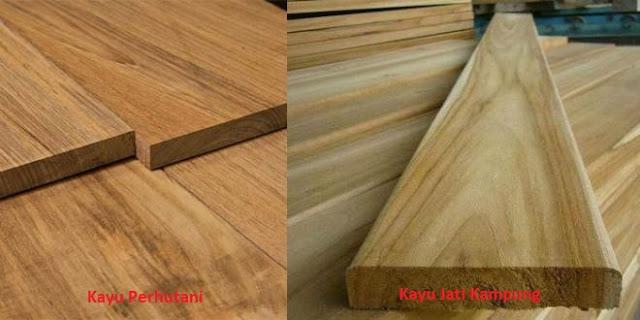 kayu jati kampung dan jati perhutani