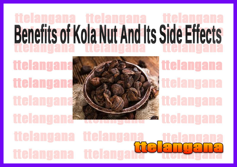 Benefits of Kola Nut And Its Side Effects