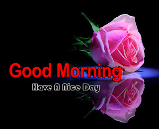 New Good Morning 4k Full HD Images Download For Daily%2B65