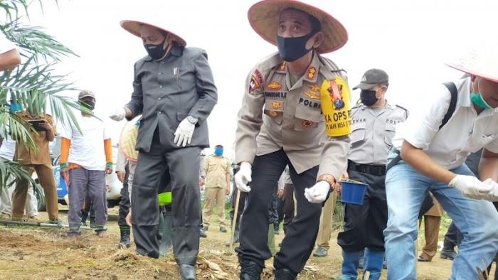 Kapolres Asahan bersama Dinas Pertanian Asahan Lakukan gerakan Tanam Jagung
