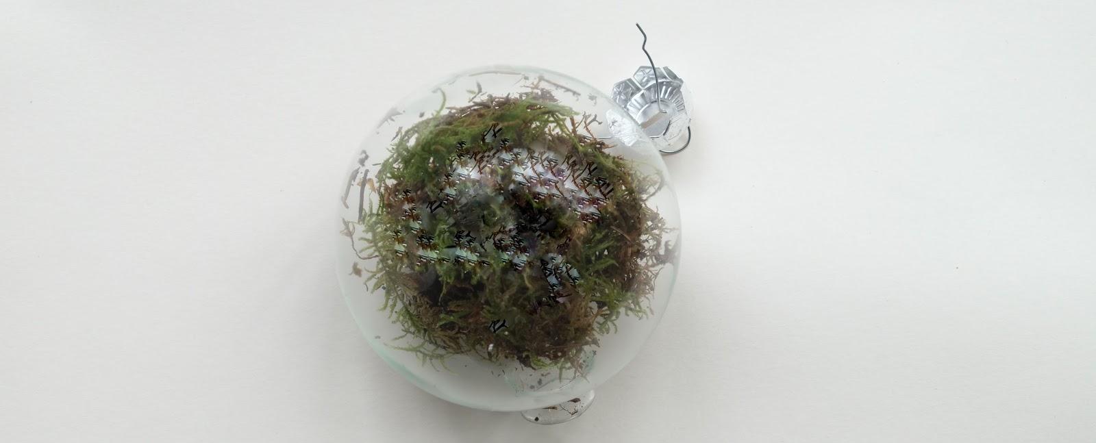 Maak een glas of plastic kerstbal vol met mos.