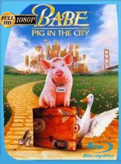 El Chanchito en la Ciudad 1998 HD [1080p] Latino [GoogleDrive] DizonHD