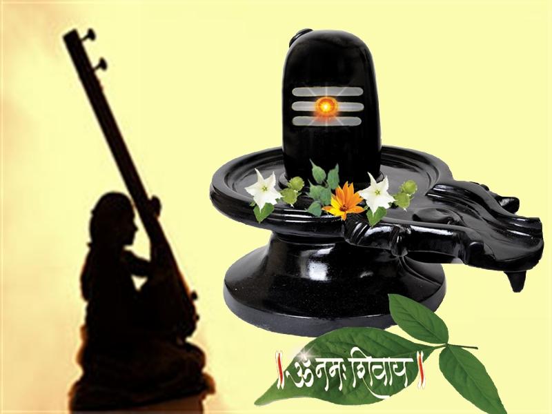 శివం - 49 ధారావాహికలు, రాజ కార్తీక్