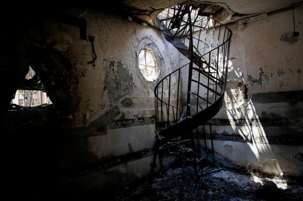 Δασοφύλακες: Οι τρεις παράγοντες που οδήγησαν στην τραγωδία