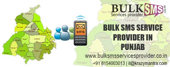 Bulk sms service provider in punjab