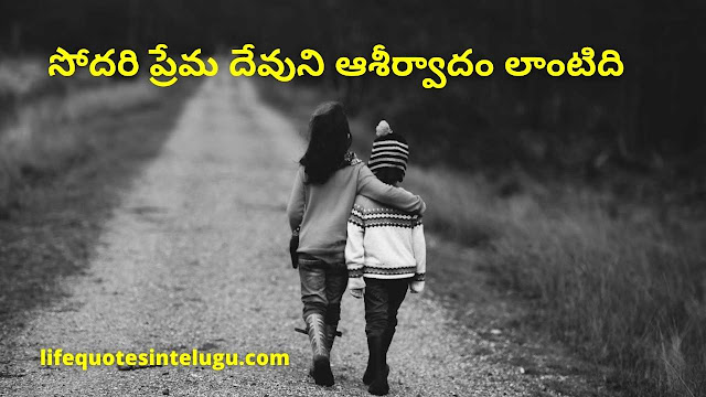 Happy Brother And Sister Quotes In Telugu