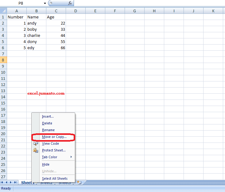 How To Duplicate an Excel Sheet To Another or New Workbook With Same Format