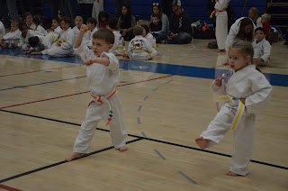 Martial arts lessons in Littleton, CO