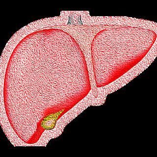 enfermedad de hígado graso