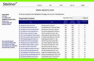 Duplicate Content Copyscape