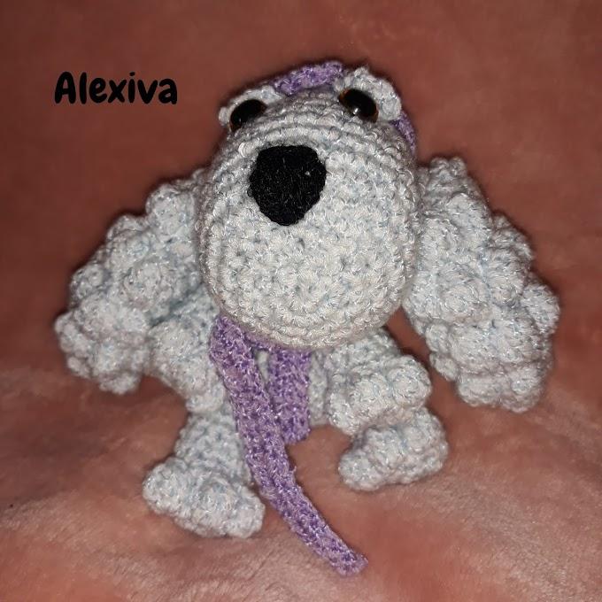 Alexiva cute sweet dog